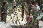 Hà Nội: Vợ bị sát hại hôm trước, hôm sau phát hiện chồng treo cổ ở ven sông