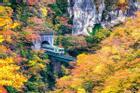 Hẻm núi Nhật Bản nhuộm sắc vàng, đỏ ngày thu