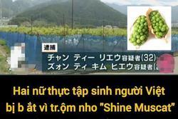 2 thực tập sinh người Việt ở Nhật bị bắt vì vào vườn ăn trộm nho