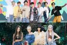 Fan BLACKPINK Việt Nam khiến V-ARMY phẫn nộ vì miệt thị BTS là '7 cô gái'