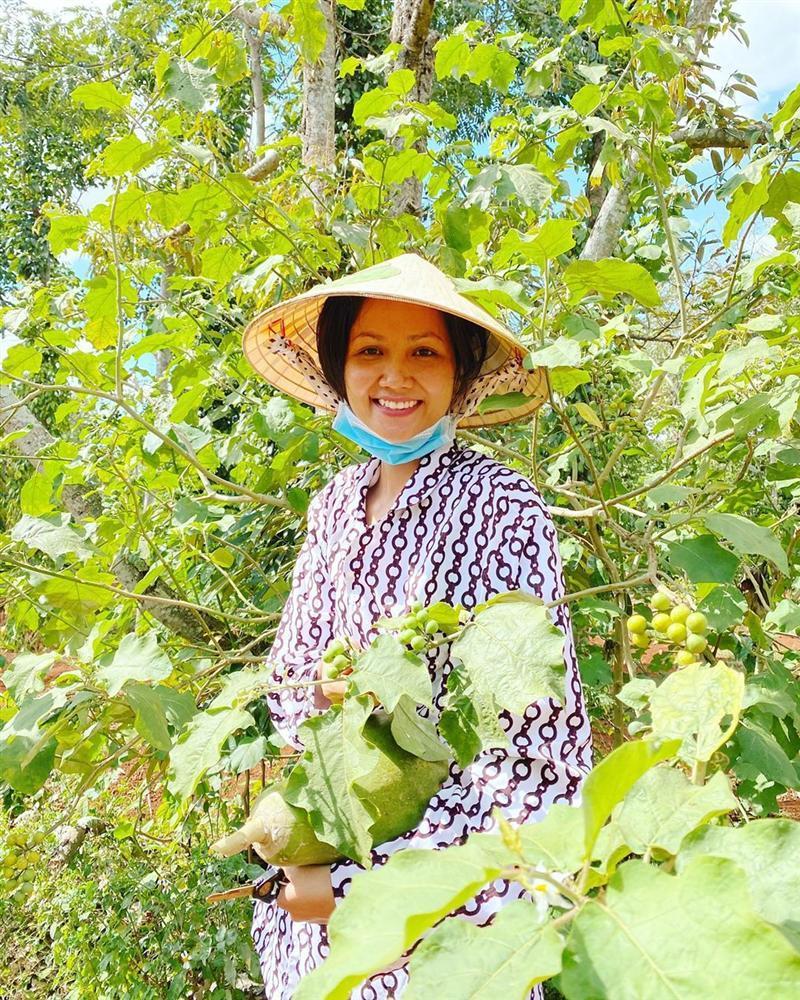 Xem HHen Niê thu hoạch rau củ, ai cũng thích được về Tây Nguyên-8