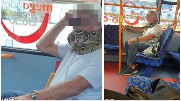 Kinh hãi người đàn ông quấn trăn quanh cổ thay cho việc đeo khẩu trang trên xe bus-1