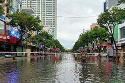 Mưa xối xả, đường ở Đà Nẵng thành sông, hàng loạt cây xanh ngã đổ