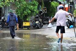 Clip: Người dân Đà Nẵng ra đường quốc lộ bắt cá sau bão số 5