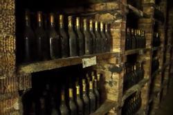 Hầm rượu nằm dưới chân núi ở Hungary