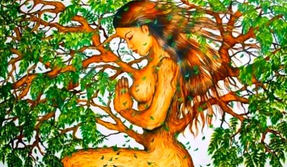 Bạn nhìn thấy cô gái hay cái cây? Câu trả lời tiết lộ bạn hướng nội hay hướng ngoại?-1