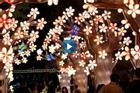 Công viên ở Singapore treo 1.500 đèn lồng đón Trung Thu