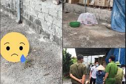 Phẫn nộ: Thi thể bé trai sơ sinh bị vứt bỏ trong túi nilon ở Hà Nội