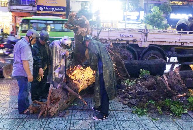 Gia cảnh nạn nhân bị cây xanh đè tử vong ở Sài Gòn: 2 vợ chồng thất nghiệp, con chưa đầy 4 tuổi-4
