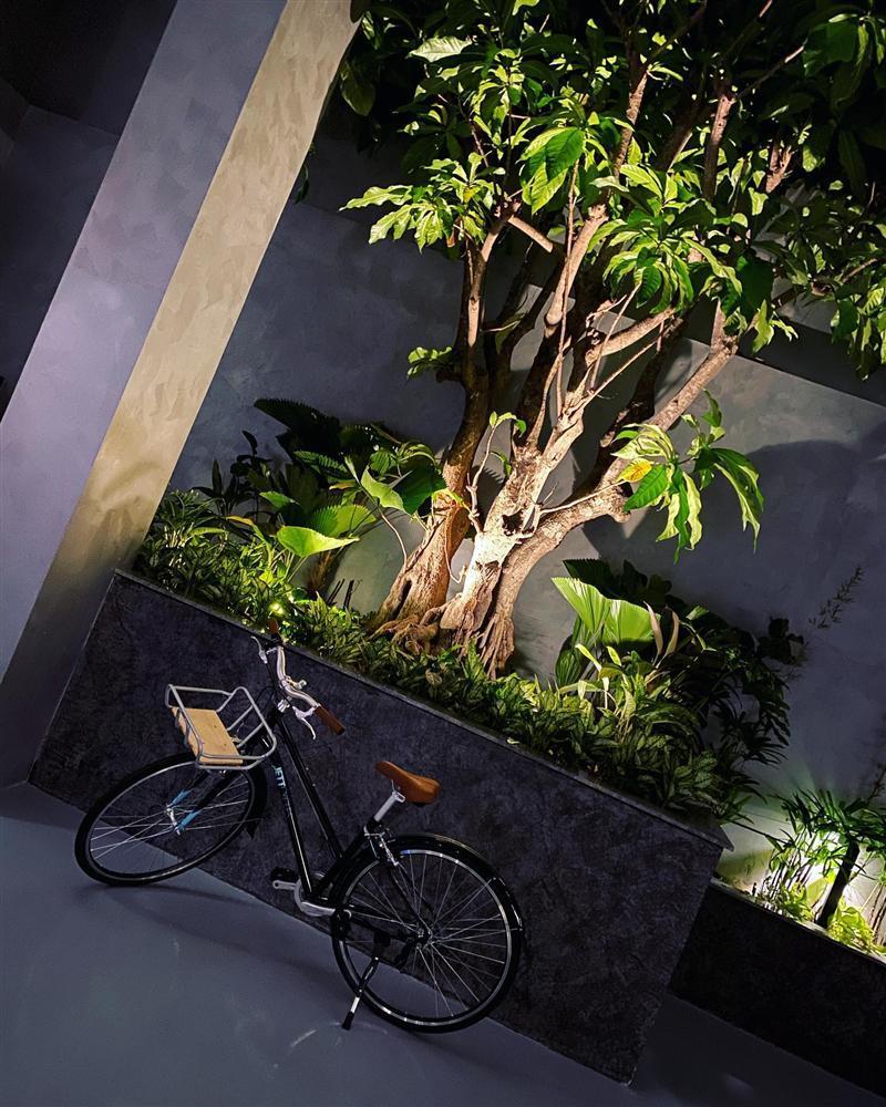 Chiếc xe đạp đầu tiên xuất hiện trong gara của vợ chồng Cường Đô La giá bao nhiêu?-1