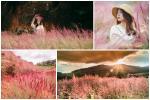 Đồi cỏ hồng Đuôi Chồn đẹp như tranh vẽ ở Đà Lạt, check-in cứ ngỡ ở 'Xứ hoa Anh Đào'