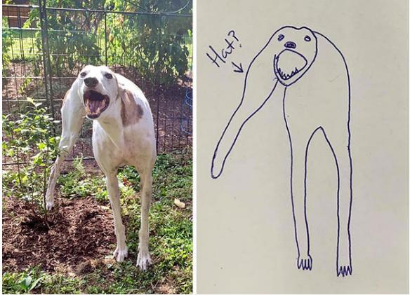 Bức tranh xấu điên đảo đánh bại mọi đối thủ, giật giải quán quân cuộc thi vẽ chó-2