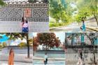 'Bức tường Hàn Quốc' giữa lòng Hà Nội đẹp như mơ, đứng chụp vu vơ vẫn có ngàn ảnh đẹp