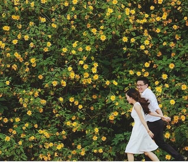 Ghé thăm Đà Lạt, rong ruổi những cung đường hoa dã quỳ đẹp nhất vào tháng 10-1