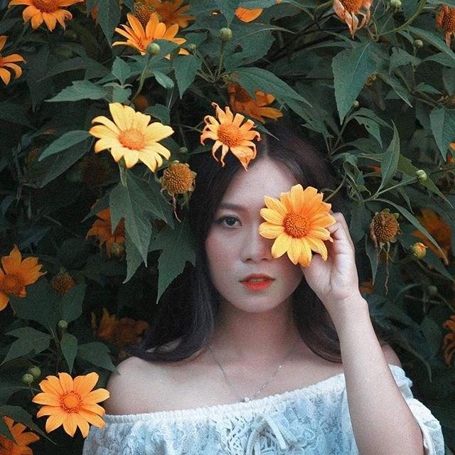 Ghé thăm Đà Lạt, rong ruổi những cung đường hoa dã quỳ đẹp nhất vào tháng 10-4
