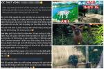 Đười ươi thử kính râm thu hút 36 triệu lượt xem-1