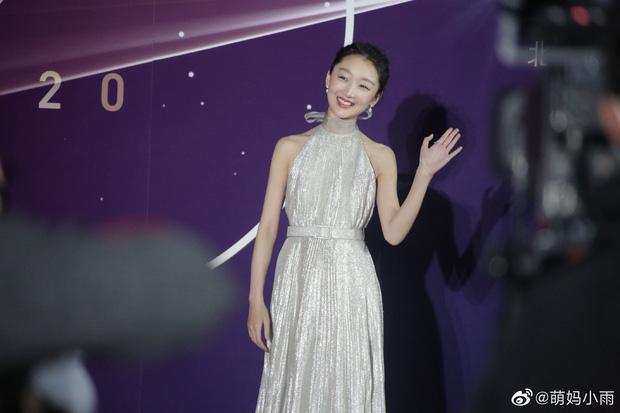 Triệu Vy, Dương Mịch cùng dàn sao quy tụ ngày kỷ niệm trường cũ Bắc Ảnh-2