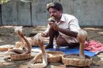 Lễ hội cởi trần ném bùn ở Ấn Độ-1
