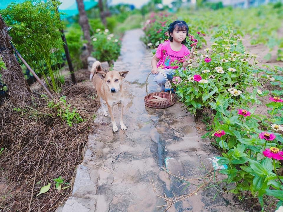 Con gái khoe khu vườn lủng lỉu hoa thơm trái ngọt của ba siêu nhân khiến cả nhà tự hào-7
