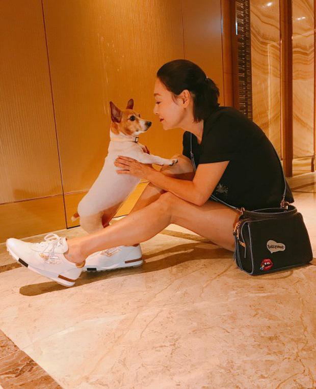 Huệ Ánh Hồng: đả nữ Hong Kong từng đi ăn xin, tìm đến cái chết vì lỡ dại chụp ảnh nóng-16