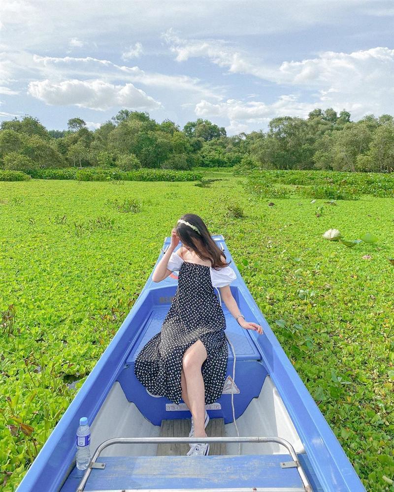 Chìm đắm trong màu xanh mê hoặc của rừng tràm Trà Sư mùa nước nổi-9
