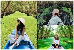 Chìm đắm trong màu xanh mê hoặc của rừng tràm Trà Sư mùa nước nổi