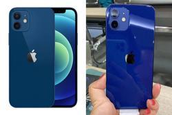 iPhone 12 màu xanh dương của Apple khiến dân mạng thất vọng ê chề, ném đá tới tấp