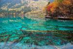 Hồ nước chấm bi ở Canada-1