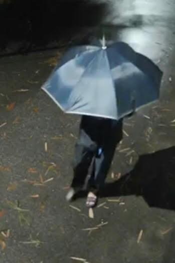 Công an Hà Nội truy tìm đối tượng cầm ô đi cướp tài sản-1