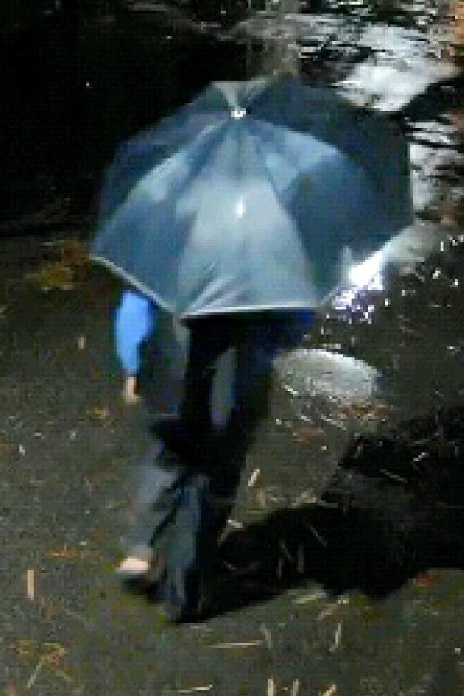 Công an Hà Nội truy tìm đối tượng cầm ô đi cướp tài sản-2