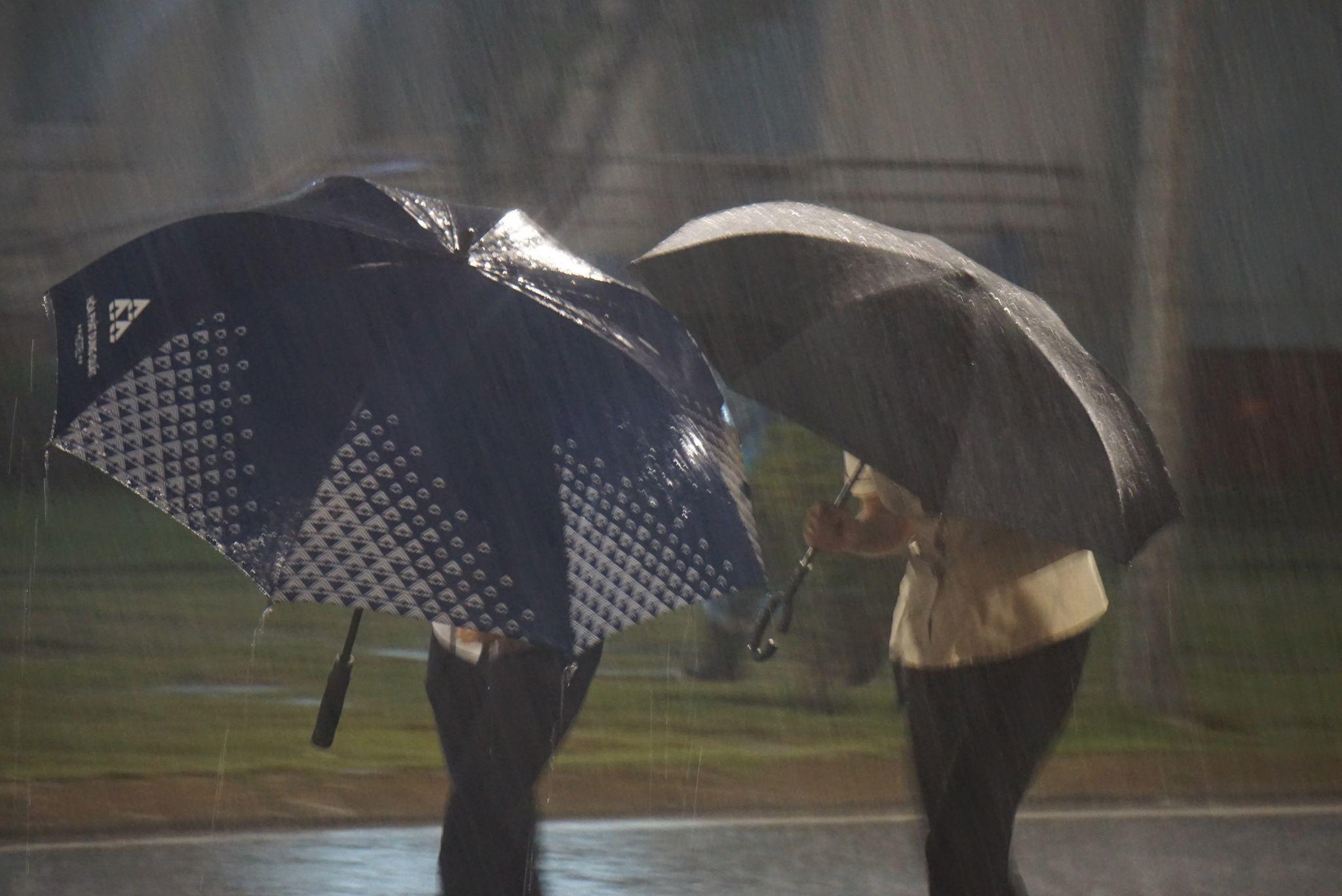 6h sáng, bão số 9 áp sát đất liền: Quảng Ngãi, Quảng Nam mưa rất lớn, gió rít liên tục-3