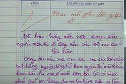 Bài văn tả về bố mẹ bị cô giáo mời phụ huynh lên gặp nhưng lại được dân mạng ngợi khen