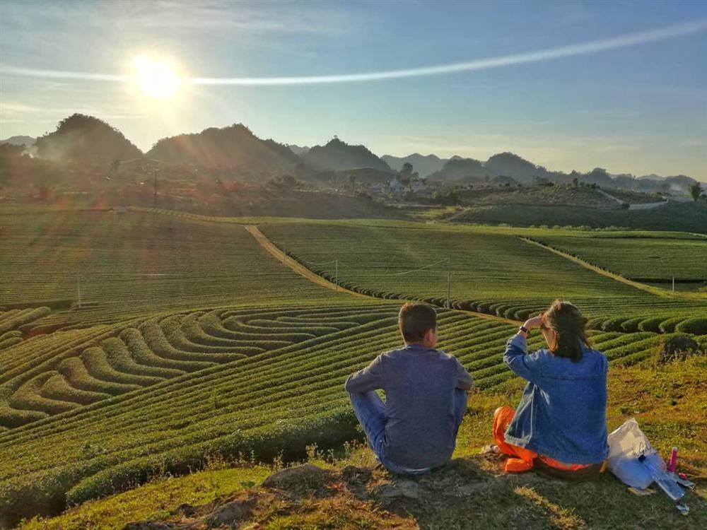 Rủ đám bạn đi check-in ngay những đồi chè đẹp thơ mộng nhất Việt Nam-6