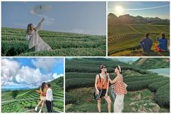 Rủ đám bạn đi check-in ngay những đồi chè đẹp thơ mộng nhất Việt Nam