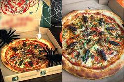Hà Nội xuất hiện món pizza có topping châu chấu, ve sầu, dế mèn nhìn mà hốt