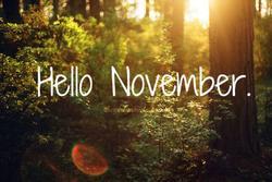 Cầu được ước thấy, những cung hoàng đạo tiền bạc dồi dào, tình yêu rực rỡ tháng 11