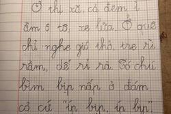 Đọc văn lớp 1 con viết, bà mẹ trẻ như 'sang chấn tâm lý' vì câu từ xoắn não