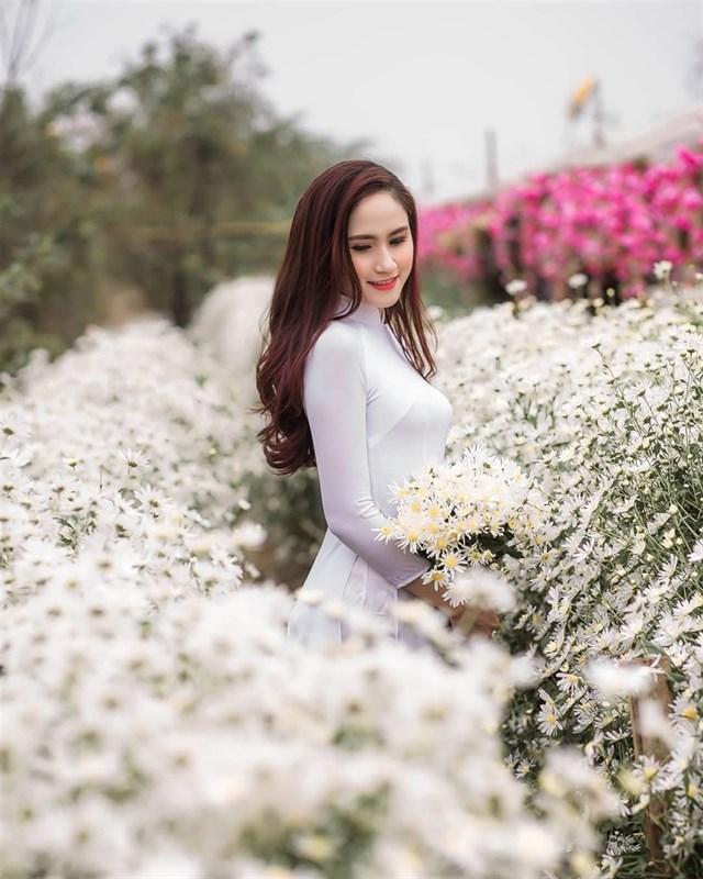 Định vị ngay những tọa độ chụp Cúc Họa Mi đẹp nhất Hà Nội vào mùa này-10