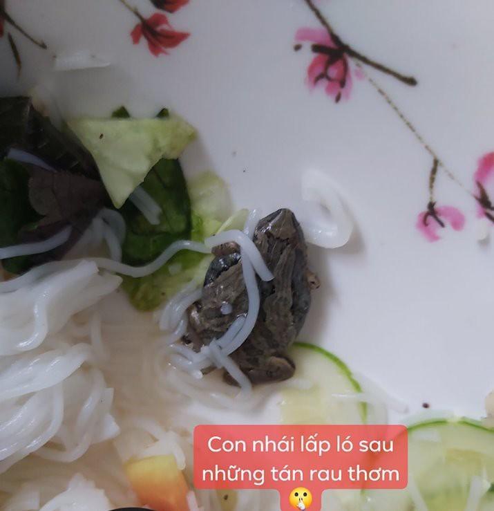 Quán bánh giò nổi tiếng Hà Nội khiếp vía vì vừa bốc mùi, vừa có ruồi trong nhân-8