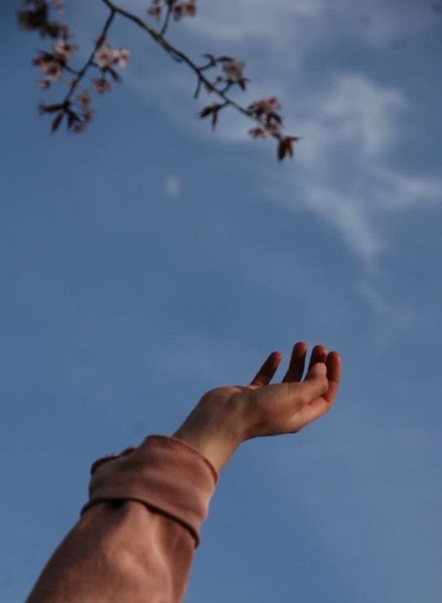 Tử vi thứ Ba ngày 10/11/2020 của 12 cung hoàng đạo: Bạch Dương tình yêu như ý, Song Tử vướng thị phi-4