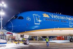 Hà Nội: Máy bay từ Đà Nẵng hạ cánh Nội Bài bị vỡ đèn dẫn đường vì va phải chim