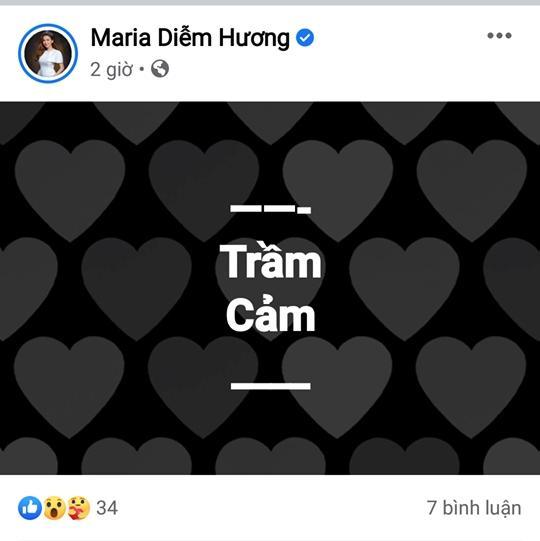 Hoa hậu Diễm Hương treo status trầm cảm lúc nửa đêm-2
