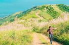 Cần gì đến Quảng Ninh, theo chân ông bố trẻ khám phá 'Bình Liêu thu nhỏ' ngay Hà Nội
