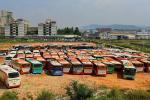Nghĩa địa xe buýt ở Hong Kong