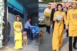 Biểu cảm hớn hở của chú chó vào ngày chủ kết hôn gây bão mạng xã hội, lý do khiến ai cũng gật gù