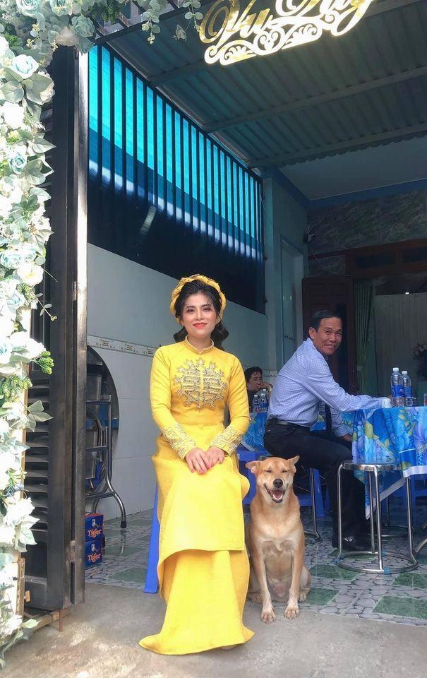 Biểu cảm hớn hở của chú chó vào ngày chủ kết hôn gây bão mạng xã hội, lý do khiến ai cũng gật gù-1