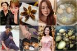 Loạt sao Việt đam mê nấu nướng nhưng kết quả vẫn thuộc 'team Ghét bếp'