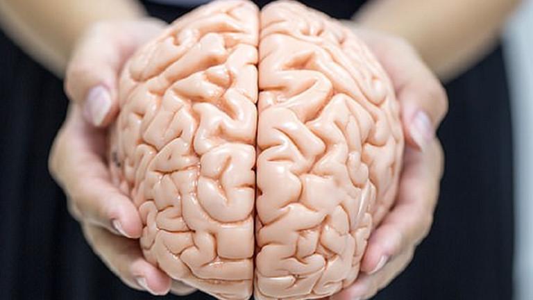 Bộ não của bạn luôn cần được tẩm bổ bằng 1 trong 6 món này mỗi ngày để sáng suốt hơn-1