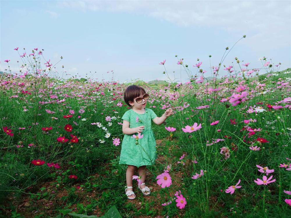 Con gái hoa hậu Ngô Phương Lan được vote sẵn 1 vé đội vương miện-1
