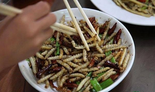 Những đặc sản kinh dị làm từ sâu béo nhung nhúc của Việt Nam, nhiều người nhìn thôi cũng khóc thét-7